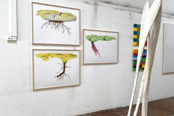 Pflanzen aus dem Projekt SMSS J031300 (Art>Tour Wetzikon, 2020)